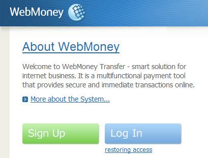 Web Money Transfer