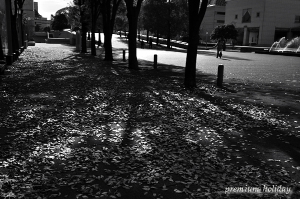 plum_0704_.jpg