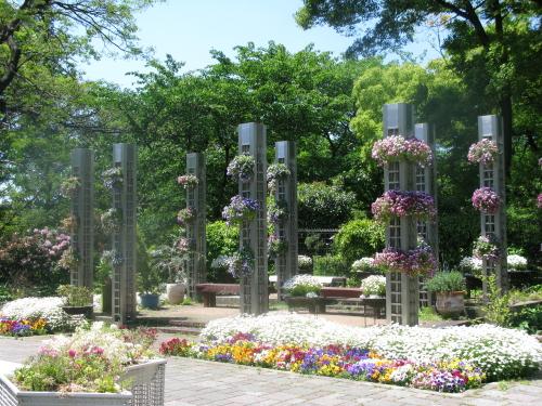 sumiyoshikouen_201305072006.jpg