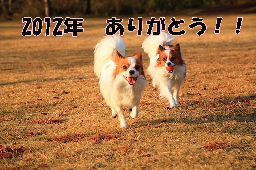 IMG_5147[1]