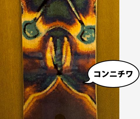 rocketfish_face2.jpg