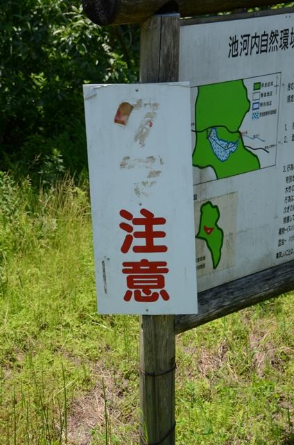 小隠里@湿原で
