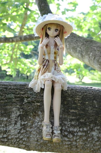 小隠里@朽木の森林公園