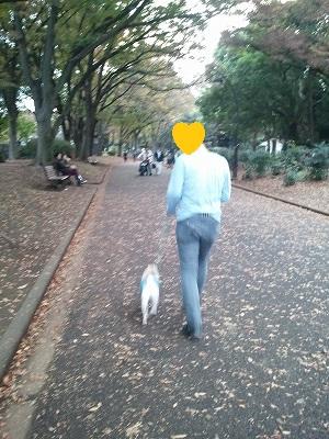 komazawa2.jpg