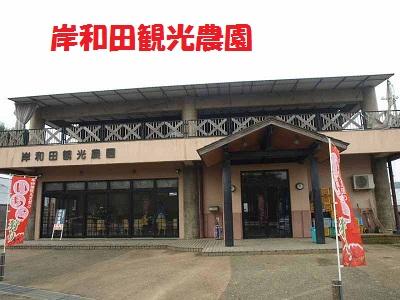岸和田観光農園