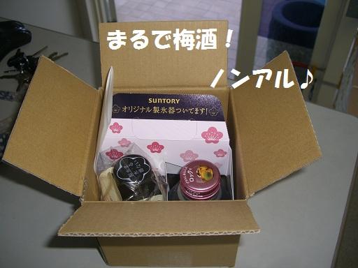 CIMG6580.jpg