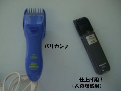 CIMG6892.jpg