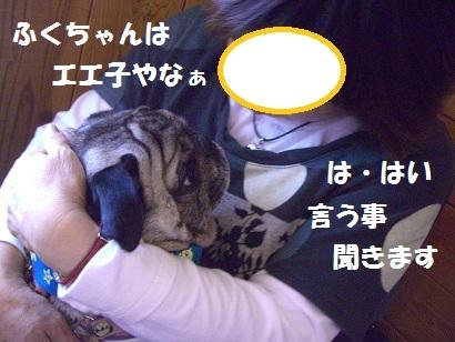 CIMG7786.jpg