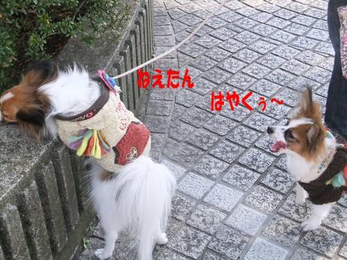 10_20130102205058.jpg