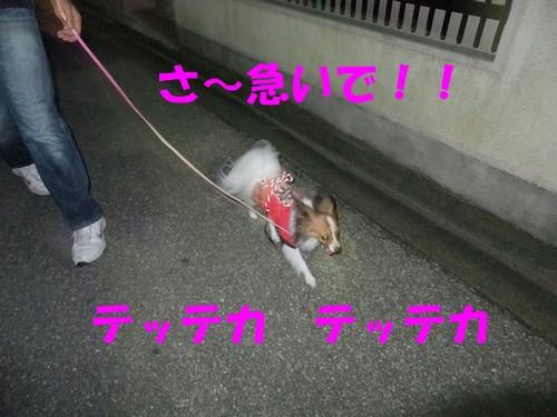 15_20120930011733.jpg