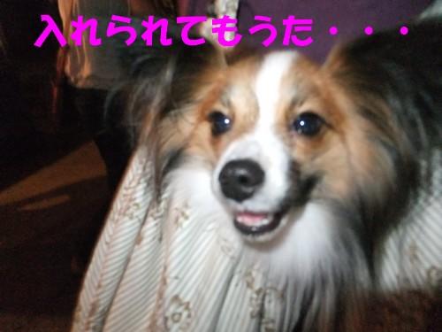 19_20120930011835.jpg