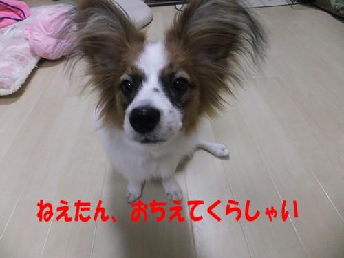 7_20130113202020.jpg