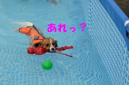 8_20120824215747.jpg