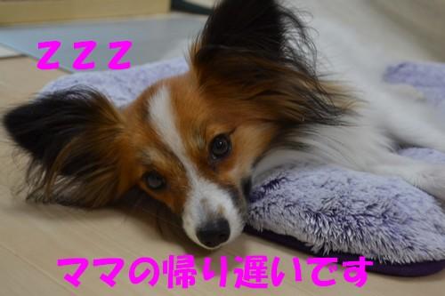 9_20121011161836.jpg