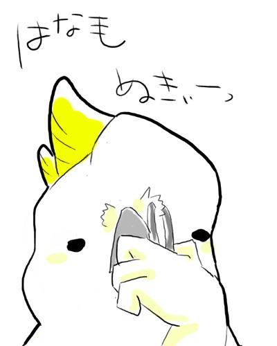 はなげぬきー kiki