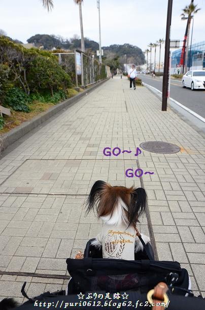 DSC_0005_20140205213345135.jpg