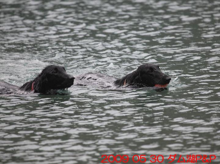 11) 2009 05 30 ダム湖PP