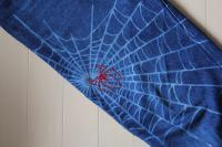 蜘蛛の巣ブラストに蜘蛛デコ