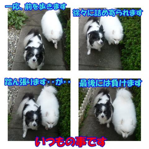 page_20121007220601.jpg