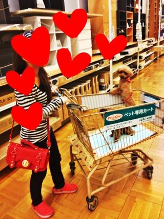 fc2blog_20121019041407a0f.jpg
