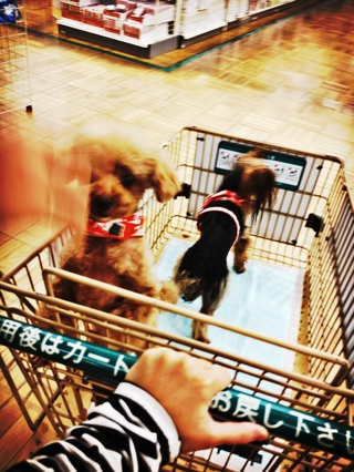 fc2blog_201210190414475f5.jpg