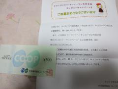 IMG_0049_convert_20120610233215.jpg