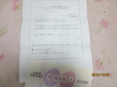 IMG_0362_convert_20121026205832.jpg