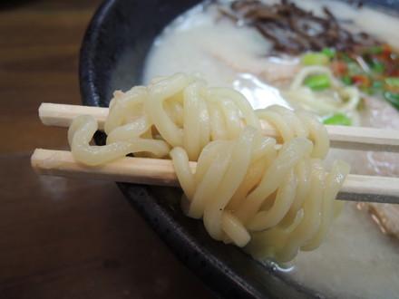 塩・鶏豚骨らぁめんの麺
