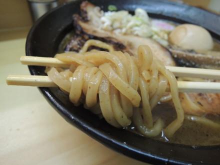 鶏白湯ラーメンの麺