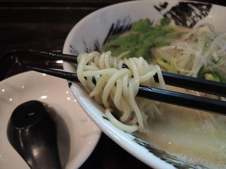 白鶏塩らーめんの麺