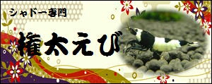 fc2blog_201205231547206c2.jpg