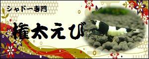 fc2blog_201206020747411e2.jpg