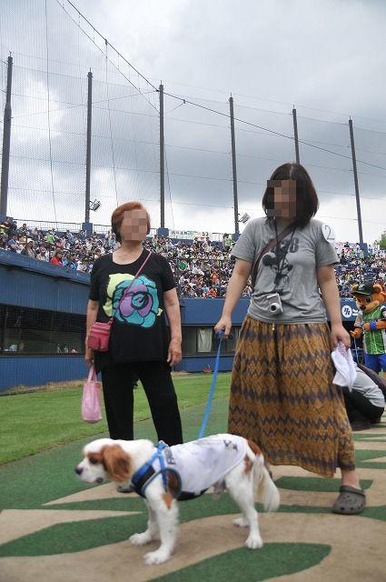 2012.4.30 鎌ヶ谷スタジアム74