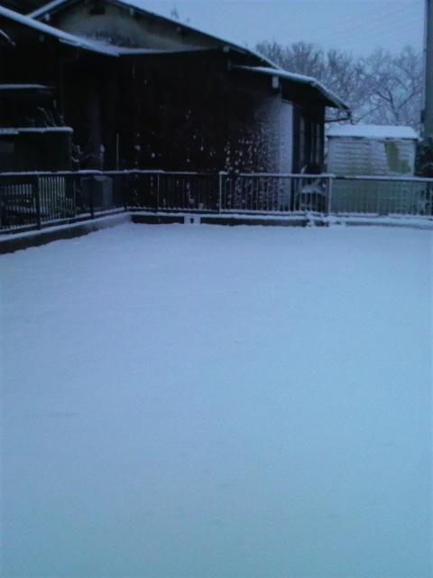 2013千葉 雪