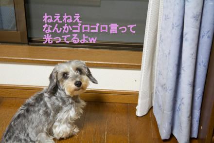 ブログ用IMG_0891