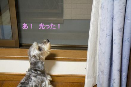 ブログ用IMG_0888