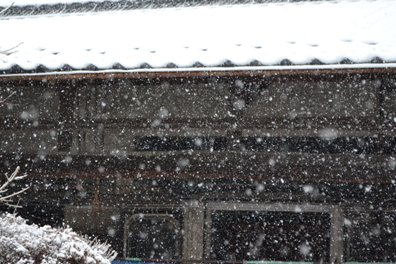 雪だけど2