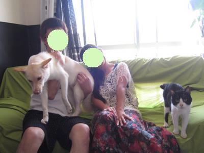 ハンク家族写真