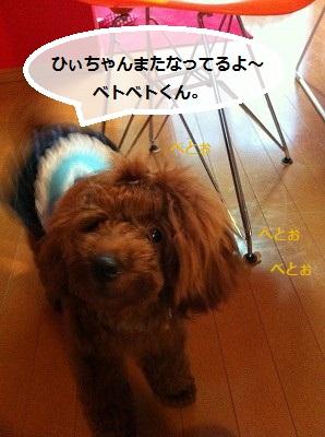 s-IMG_2368.jpg