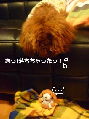 s-P1030141.jpg