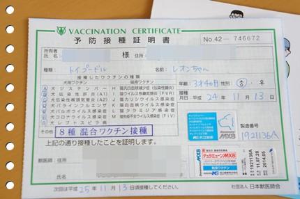 DSC00755-2.jpg