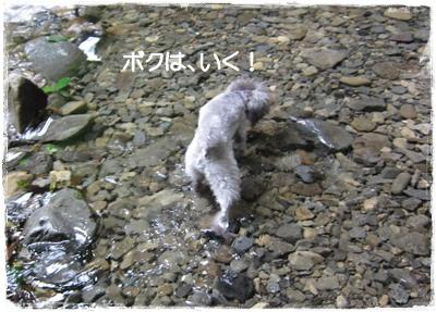 IMG_0102-1.jpg