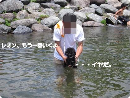 IMG_0372-1.jpg