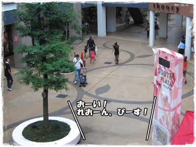 IMG_1278-1.jpg