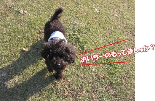 IMG_3704-1.jpg