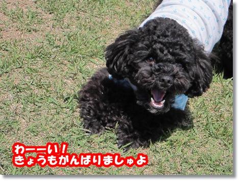 IMG_5613-1.jpg