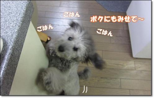 IMG_7665-1.jpg