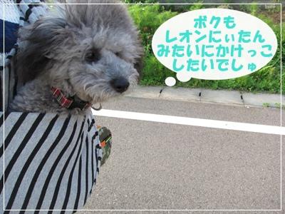 IMG_7736-1.jpg