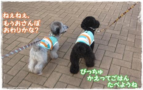 IMG_7874-1.jpg
