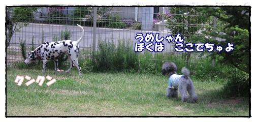 IMG_8024-1.jpg